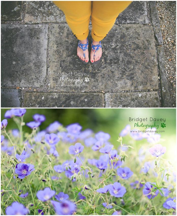 Woburn Abbey Garden Show 2015   Garden Photography Course2