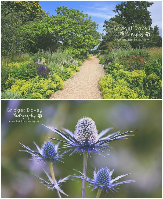 Woburn Abbey Garden Show 2015   Garden Photography Course3