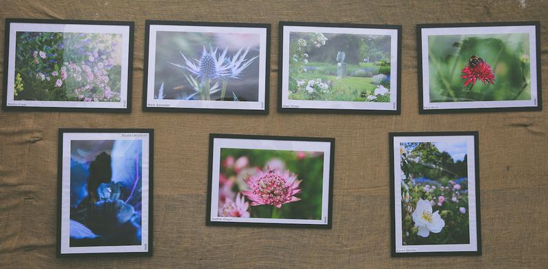 Woburn Abbey Garden Show 2015   Garden Photography Course7