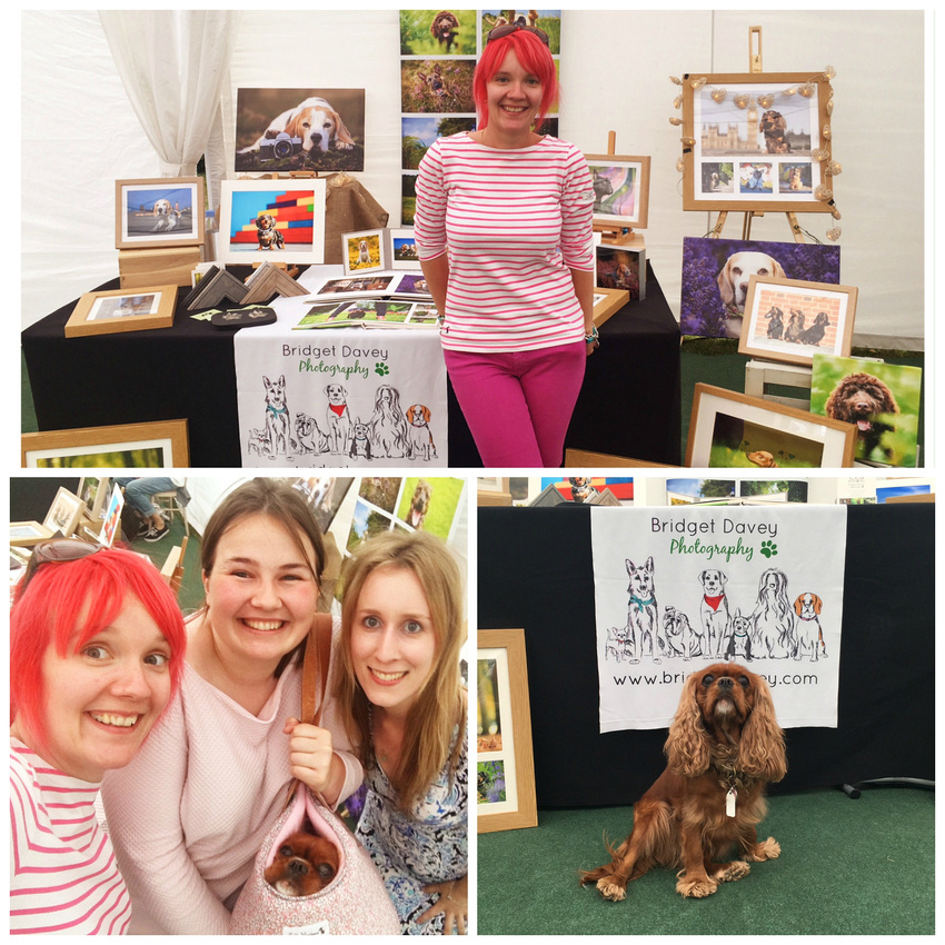 Belgrave Dog Show | London Dog Photography