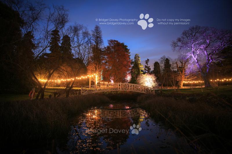 Woburn Luminaries at Woburn Abbey & Gardens | Woburn, Bedfordshire