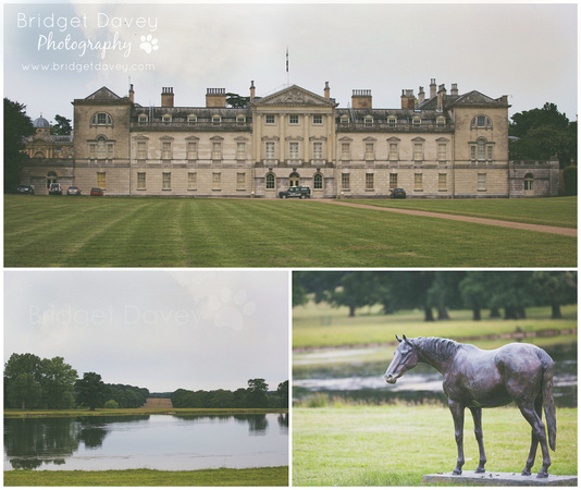 Woburn Abbey - Evening Garden Tour