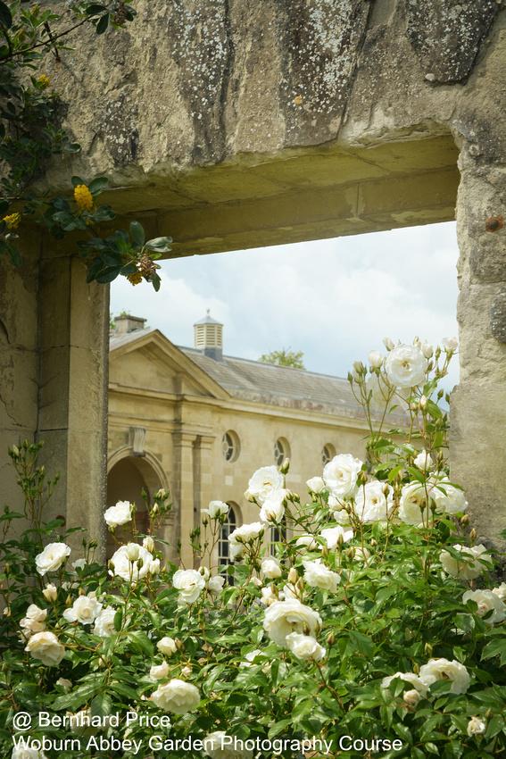Woburn Abbey - Garden Photography Course | Bernhard Price