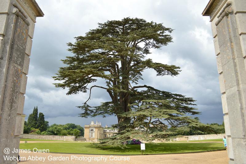 Woburn Abbey - Garden Photography Course | James Owen