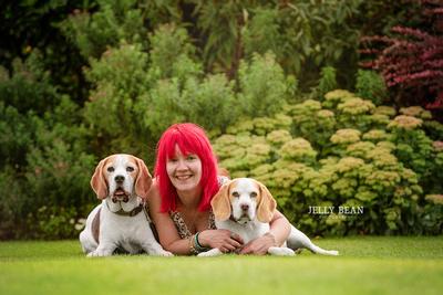 Professional Dog Photographer in Bedfordshire, Hertfordshire, Buckinghamshire & London