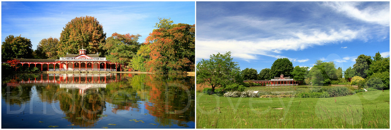 Woburn Abbey Gardens and Woburn Safari Park, Woburn | Bedfordshire